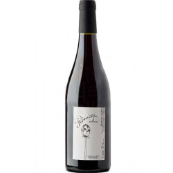 Raudonasis vynas Prémices... (13 % alk. tūrio, 0,75 l)