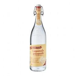 Natūralus limonadas iš šaltinio vandens