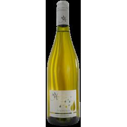 Baltasis vynas MAISON ALBERT Signature Muscat Sec (13,5 %) (0,75 l)